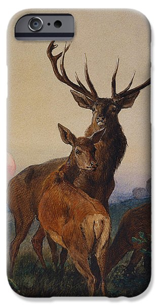 Wild Animals iPhone Cases - A Stag with Deer in a Wooded Landscape at Sunset iPhone Case by Charles Jones