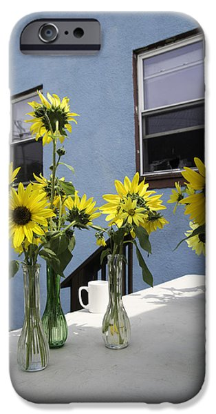A Sunny Day iPhone Case by Michael Glenn
