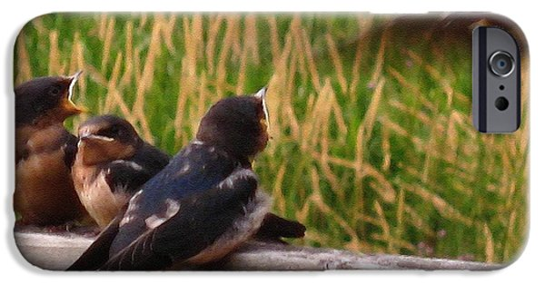 Best Sellers -  - Barn Swallow iPhone Cases - A Third Baby Barn Swallow Has Joined the Lunch Crowd iPhone Case by J McCombie