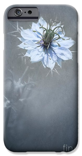 Flora Mixed Media iPhone Cases - a Touch of Blue iPhone Case by Svetlana Sewell