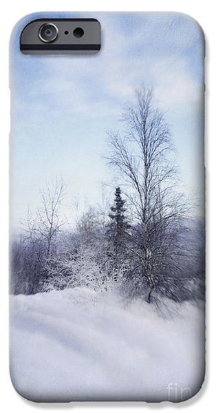 a tree in the cold iPhone Case by Priska Wettstein