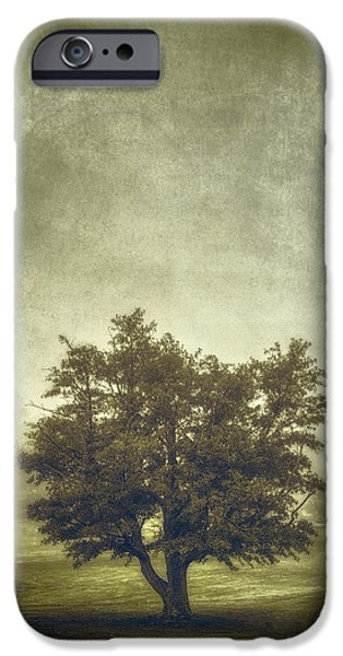 Analog iPhone Cases - A Tree in the Fog 2 iPhone Case by Scott Norris