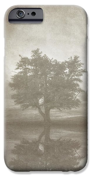 Alone Digital iPhone Cases - A Tree in the Fog 3 iPhone Case by Scott Norris