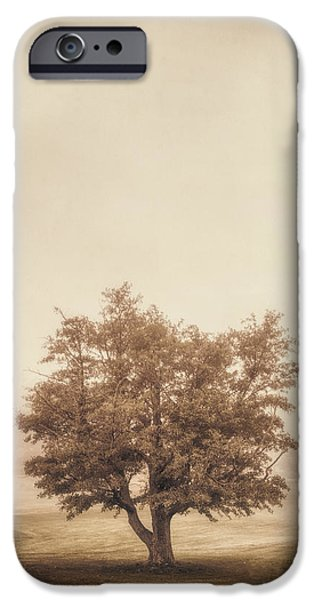 Mist iPhone Cases - A Tree in the Fog iPhone Case by Scott Norris