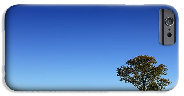 Farm Stand iPhone Cases - A Tree Stands Alone iPhone Case by Karol  Livote