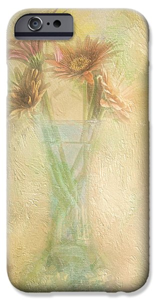 A Vase Of Gerbera Daisies In the Sun iPhone Case by Diane Schuster