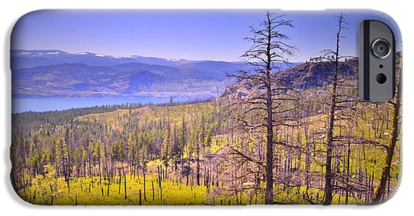 Park Scene iPhone Cases - A View from Okanagan Mountain iPhone Case by Tara Turner