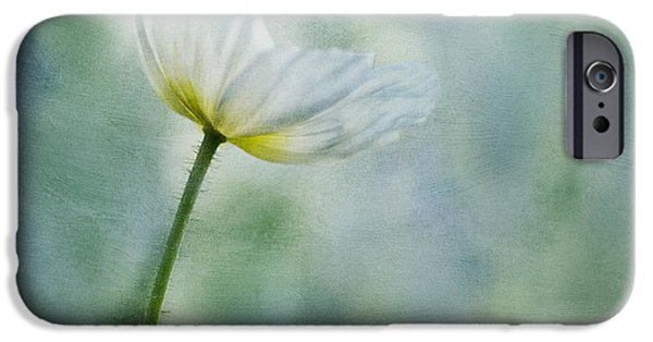 Flora Photographs iPhone Cases - A Vision Of Delight iPhone Case by Priska Wettstein
