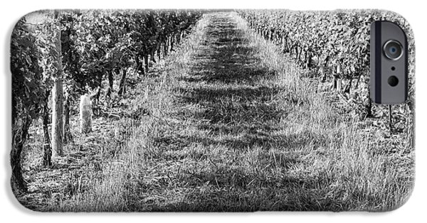 South West France iPhone Cases - A Walk Through the Vineyard iPhone Case by Nomad Art And  Design