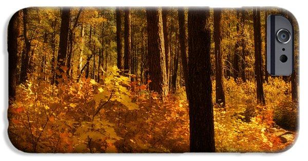 Oak Creek iPhone Cases - A Walk Through the Woods  iPhone Case by Saija  Lehtonen