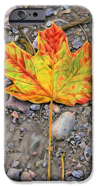 Autumn Drawings iPhone Cases - A Walk Through The Woods iPhone Case by Sarah Batalka