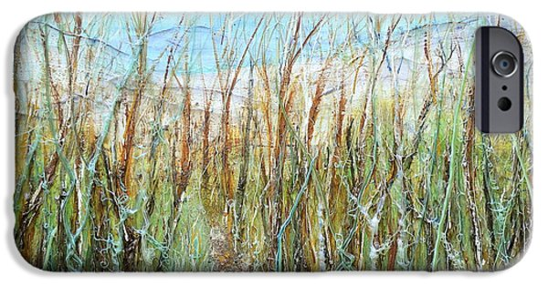 Abstract Beach Landscape Reliefs iPhone Cases - A walk to the Dunes iPhone Case by Regina Valluzzi