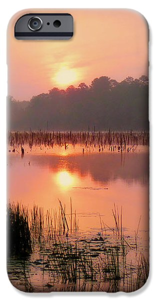 A Wetlands Sunrise iPhone Case by JC Findley