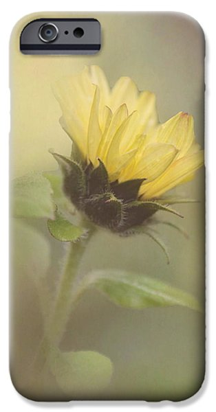 A Whisper of a Sunflower iPhone Case by Angie Vogel