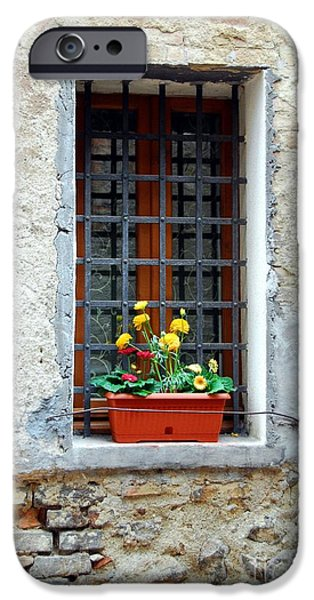 A Window In Tuscany iPhone Case by Mel Steinhauer