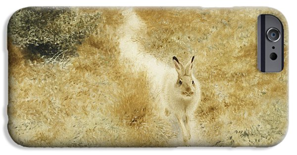 Animal Cards iPhone Cases - A Winter Hare in a Landscape iPhone Case by Bruno Andreas Liljefors
