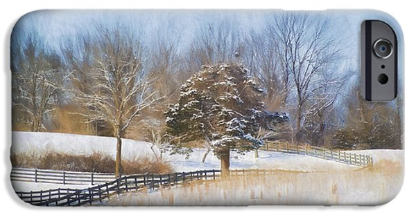 Snow Scene iPhone Cases - A Winter Scene iPhone Case by Kathy Jennings