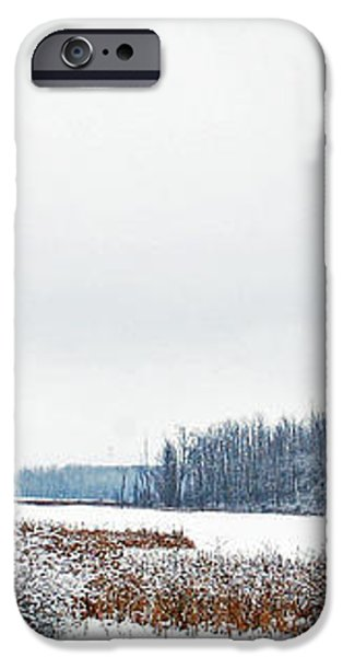 A Winters dream iPhone Case by Aimee L Maher Photography and Art