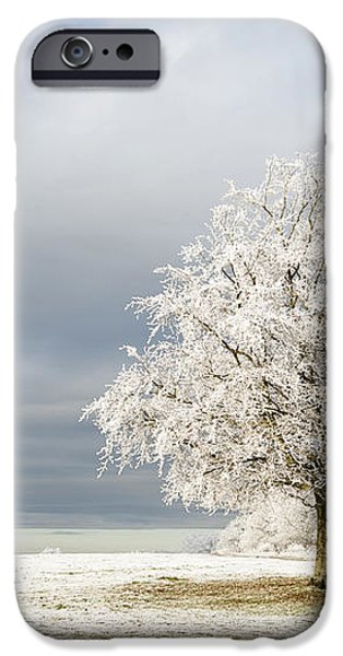 A Winter's Morning iPhone Case by Anne Gilbert