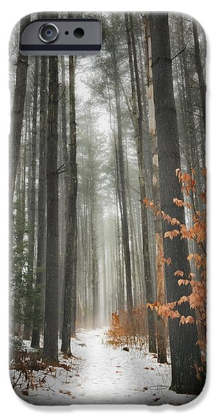 A Winters Path iPhone Case by Bill  Wakeley
