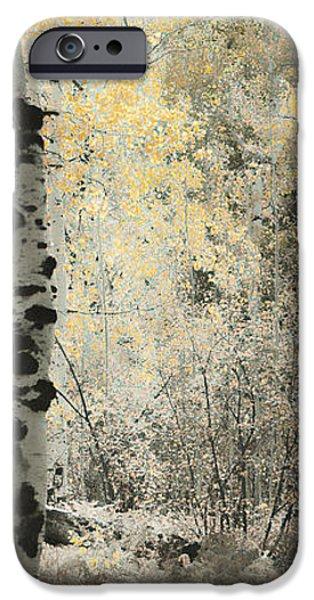 A Wisp of Gold iPhone Case by Don Schwartz