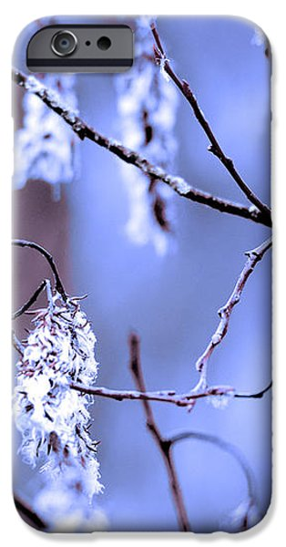 A withered branch iPhone Case by Toppart Sweden
