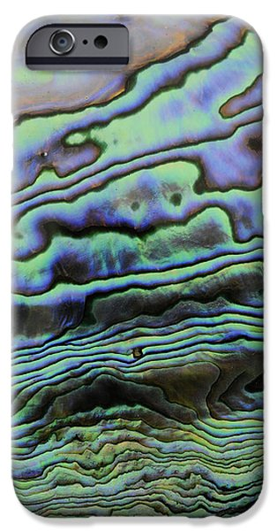 Abalones iPhone Cases - Abalone Mother Of Pearl iPhone Case by Malcolm Schuyl
