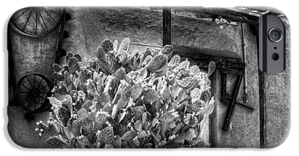 Feed Mill Photographs iPhone Cases - The Old Mill in Black and White iPhone Case by Tabitha Williams