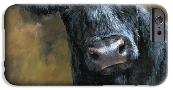 Horse iPhone Cases - Aberdeen Angus Calf iPhone Case by Dina Earl