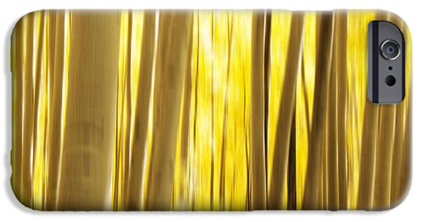 White River iPhone Cases - Abstract Aspens iPhone Case by Juli Scalzi