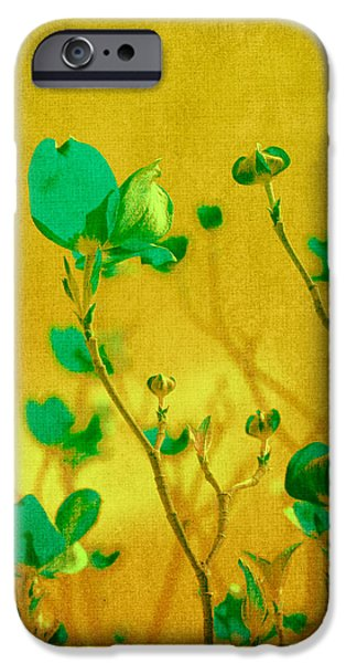 Yellow Abstracts iPhone Cases - Abstract Dogwood iPhone Case by Bonnie Bruno