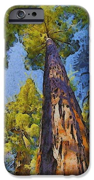 Tree Roots iPhone Cases - Abstract Giant Sequoia iPhone Case by Barbara Snyder