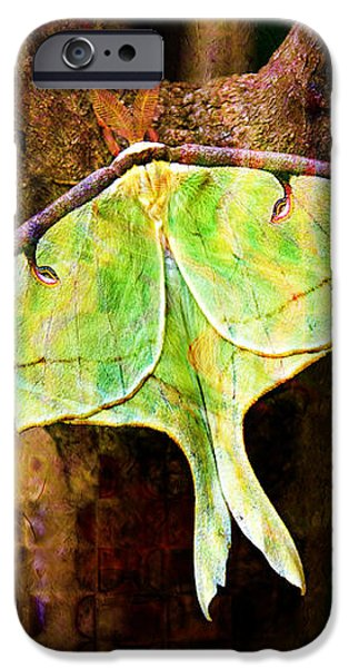 Abstract Luna Moth Painterly iPhone Case by Andee Design