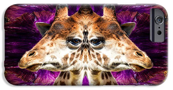 Giraffe Abstract iPhone Cases - Abstract Mirrored Giraffe With Beautiful Eyes iPhone Case by Kim M Smith