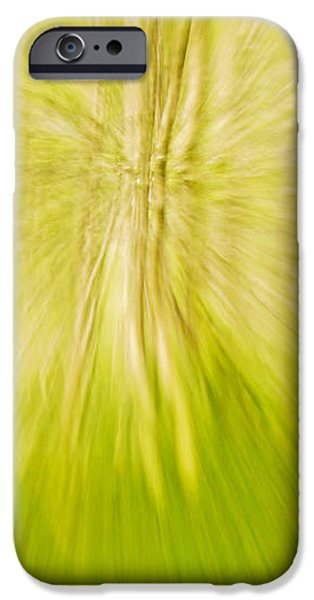 Abstract nature  iPhone Case by Gry Thunes