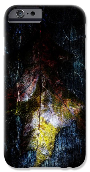 Abtracts iPhone Cases - Abstract oak leaves iPhone Case by Toppart Sweden