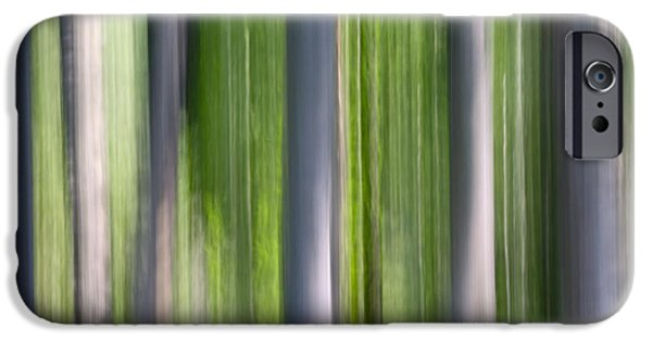 Nature Abstracts iPhone Cases - Abstract Photo Of Birch Trees, Alaska iPhone Case by Mark Stadsklev