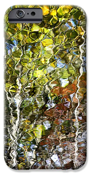 Nature Abstract iPhone Cases - Abstract Tree Reflection iPhone Case by Christina Rollo
