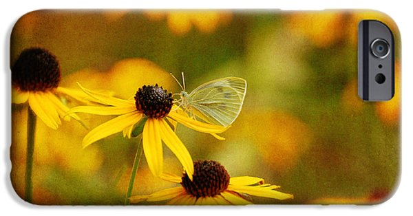 Cabbage White Butterfly iPhone Cases - Abundance iPhone Case by Lois Bryan