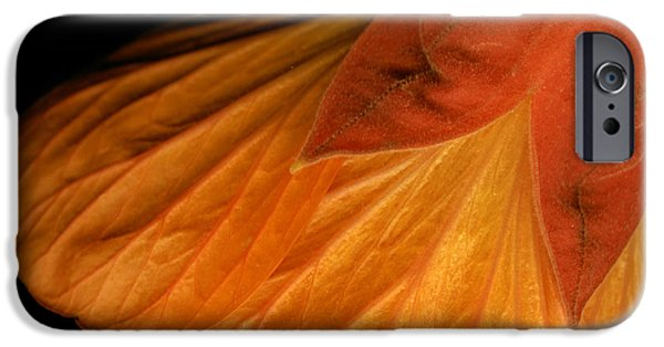 Scanography iPhone Cases - Abutilon Skirt iPhone Case by Marsha Tudor