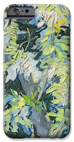 Plant iPhone Cases - Acacia in Flower iPhone Case by Vincent van Gogh