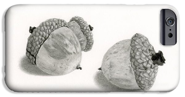 Unique Drawings iPhone Cases - Acorns- Black And White iPhone Case by Sarah Batalka
