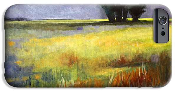 Business Paintings iPhone Cases - Across the Field iPhone Case by Nancy Merkle