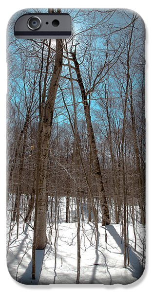 Snow Scene iPhone Cases - Adirondack Shadows iPhone Case by David Patterson
