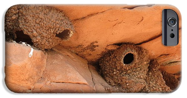 Barn Swallow iPhone Cases - Adobe Homes iPhone Case by Karen Mary Castranova
