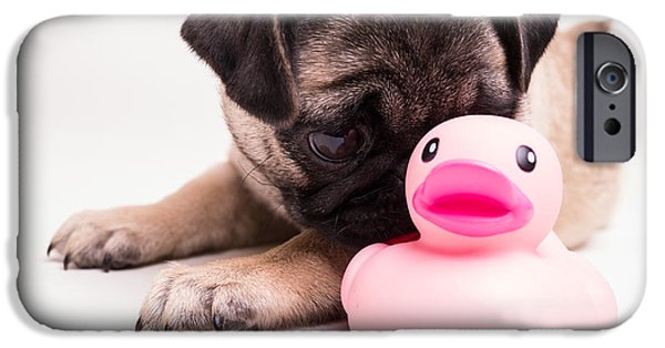 Cute. Sweet iPhone Cases - Adorable Pug Puppy with pink rubber ducky iPhone Case by Edward Fielding