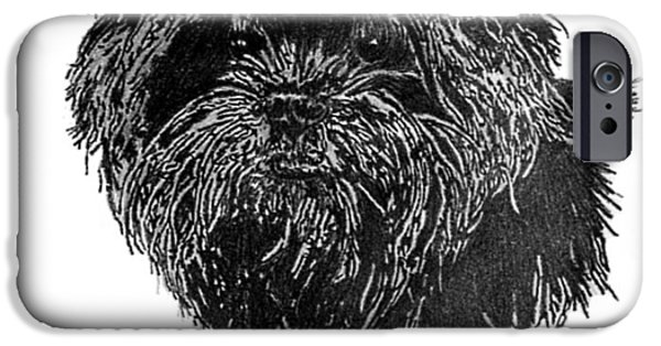 Dog Jewelry iPhone Cases - Affenpinscher Head Study iPhone Case by Virginia Cleary