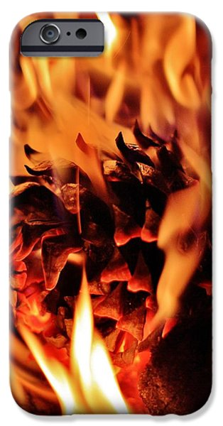 Pine Cones Photographs iPhone Cases - Aflame iPhone Case by Benjamin Yeager