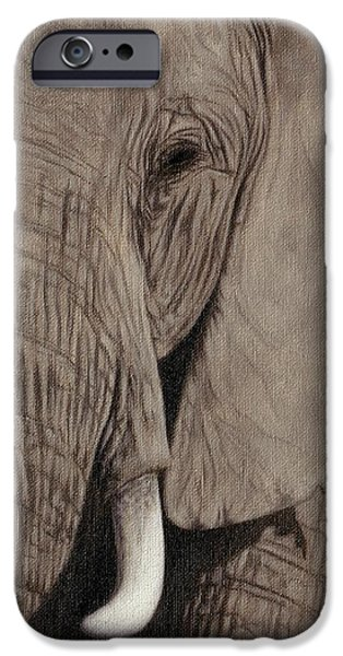 Large Mammals iPhone Cases - African Elephant Painting iPhone Case by Rachel Stribbling