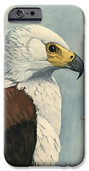 Ethiopia iPhone Cases - African Sea Eagle  iPhone Case by Louis Agassiz Fuertes